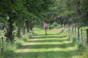 Het Meerdaags Wandelevenement Venray gaat niet door in juni maar misschien later dit jaar !!!!!