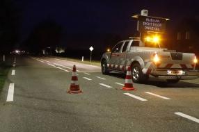 Drie pony's overleden na aanrijding door automobilisten op N264 bij Oeffelt
