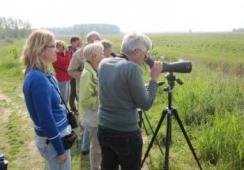 Foto's van IVN De Maasvallei