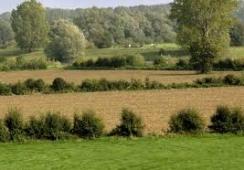 Foto's van Stichting Landschapsbeheer Boxmeer