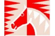 Ponyclub Saxe Gotha