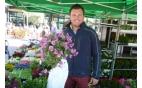 Smeitink Bloemen en planten
