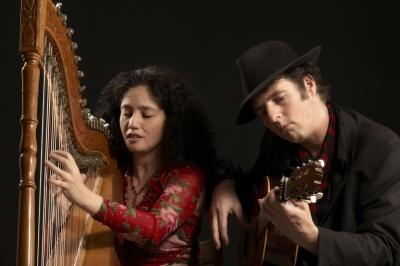 Evenement: Zuid Amerikaans harpconcert in Bagijnenkerk Grave