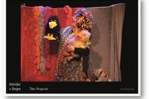 Kindertheater de Pimpernel Het Weijertheater