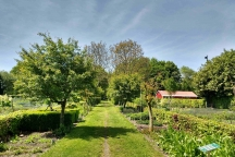 Wilde planten als groente en geneeskruid Buitenhuis bij Kinderboerderij Buiten-gewoon, Beukenlaan 8, 5363 RA Velp